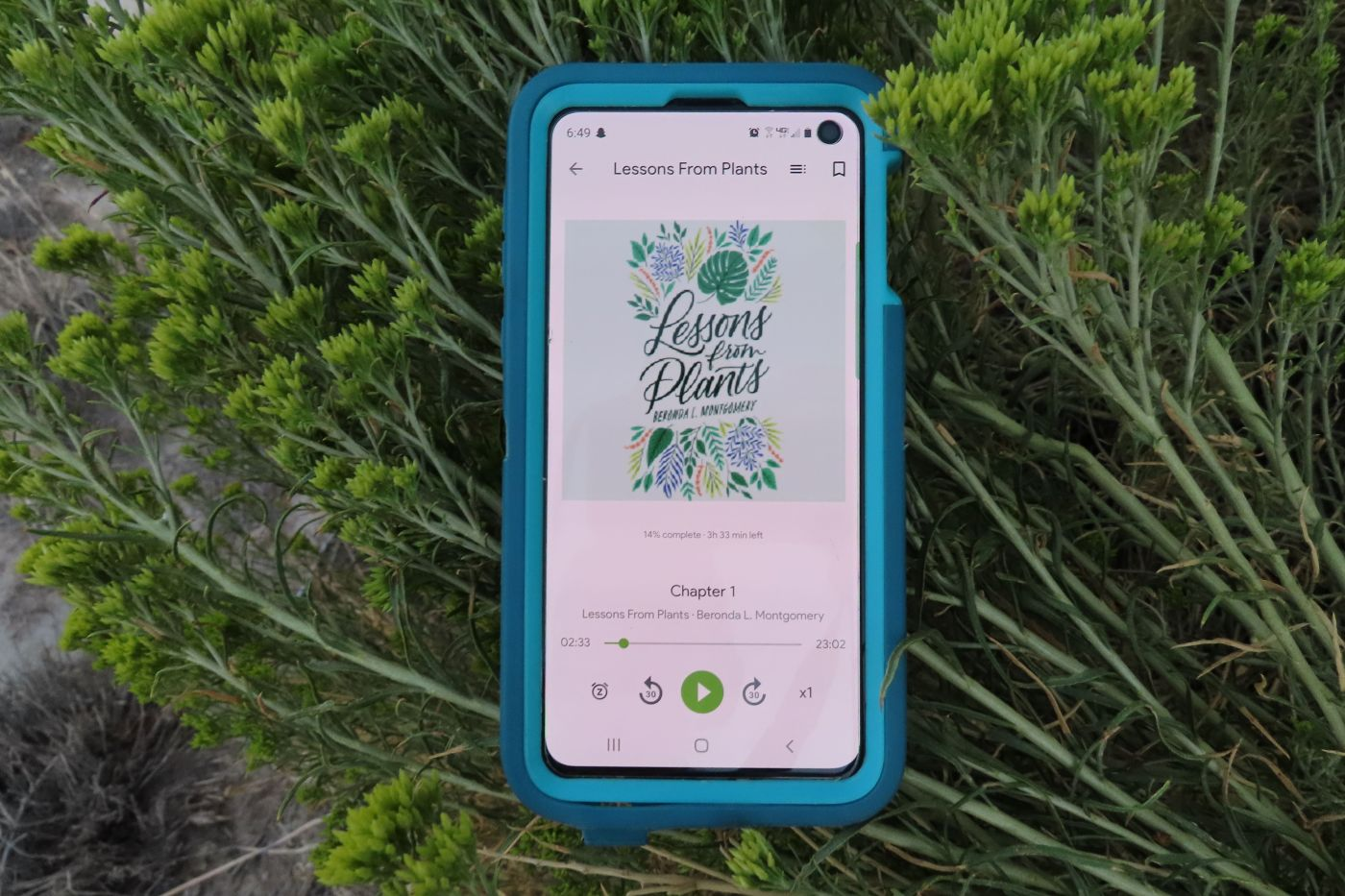Audiobook of Lessons from plants playing on a blue smartphone